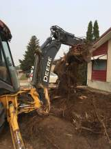 Stump removal, just one of the many services we offer.